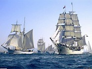Participating ships at the Tall Ship Races